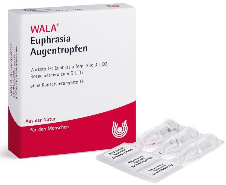 Euphrasia
